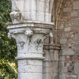 Capitel de los restos de la abadía cisterciense de Fontainejean